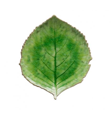 Costa Nova Riviera assiette hydrangea-feuille Costa Nova, vert (Ø 22 cm) VEP221GR - Coutellerie du Jet d'eau