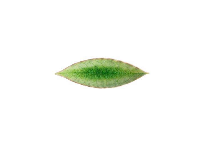 Costa Nova Riviera assiette laurel-feuille Costa Nova, vert (L 18 cm) VEP182GR - Coutellerie du Jet d'eau